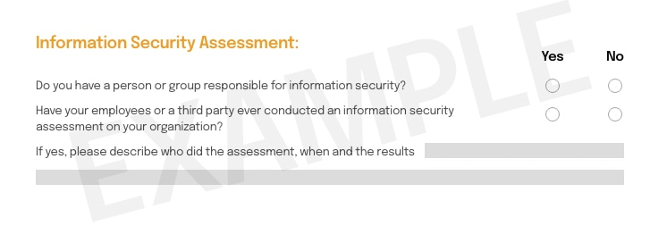 img-questions-04-security-assessment-r1